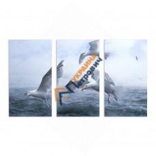 Модульная фотокартина на холсте «Чайки»