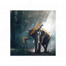 Самостоятельный сегмент модульной картины «Слон»