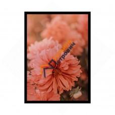 Постер в рамке формата А4 - «Нежность»